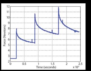 CopolymerStretchingANLR-1