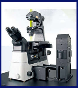 WITec Alpha300 Ri Inverted Confocal Raman Imaging